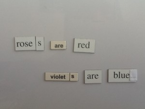 "fridge magnet poetry ""roses are red violets are blue"""